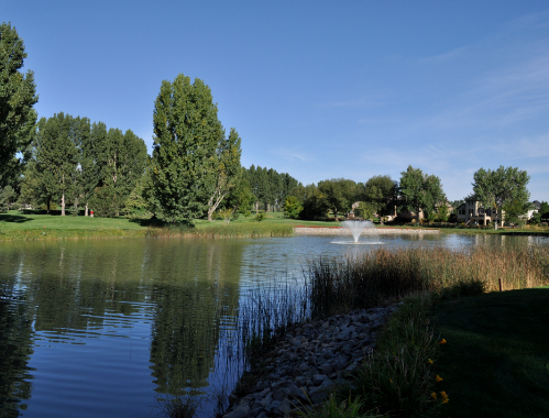 A pond on the course at The Fox Hill Club
